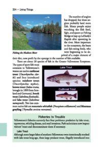 Fishing page 354