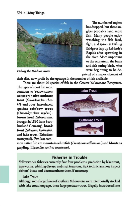 Fishing page 354