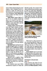 Daisy Geyser Punch Bowl Spring page 102
