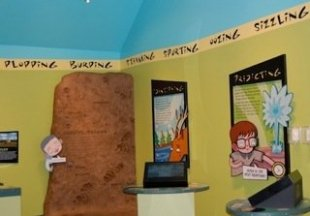 visitor center exhibit for kids