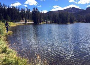 Sylvan Lake Summer 2014