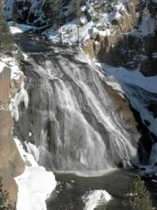 gibbon falls in winter