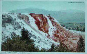 Jupiter Terrace postcard