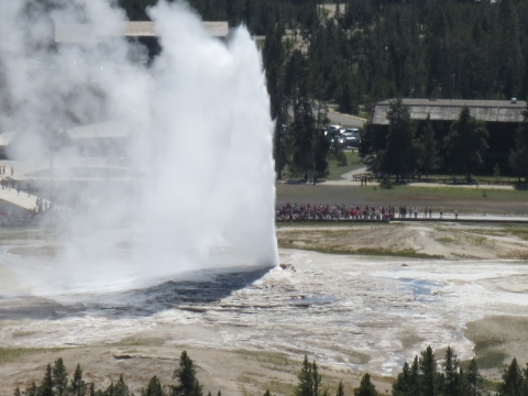 Old Faithful 2013