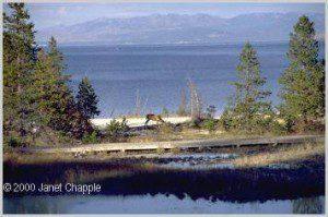 Yellowstone Lake with deer