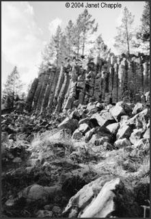 Sheepeater Cliffs by Leslie Kilduff