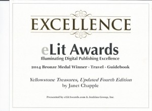 eLit bronze award reference