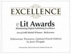 e-book eLit gold award certificate