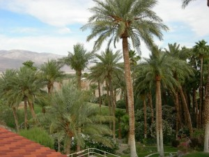 Oasis at Furnace Creek Inn