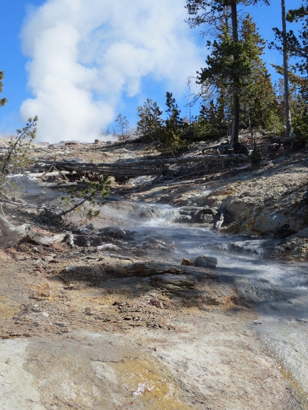 Steamboat Geyser runoff